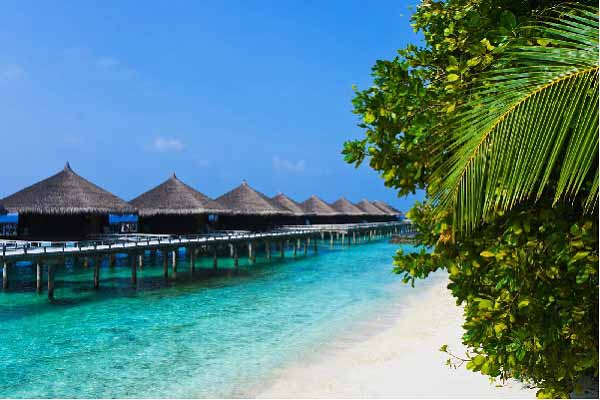 Exotic Andaman's Tour
